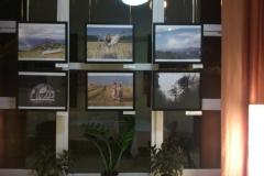 Egynyári kaland fotópályázat kiállítás